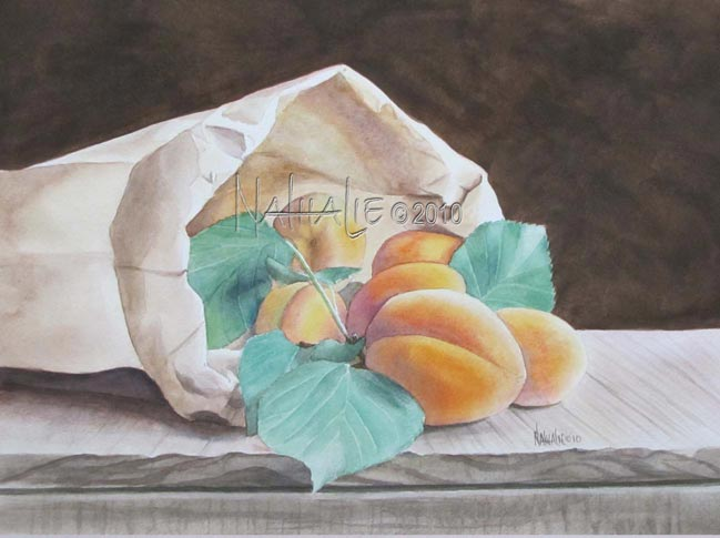 Apricots in a Sack Watercolor by Nathalie Kelley