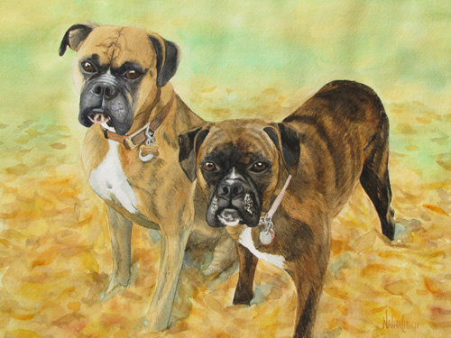 Bevo and Lucy - Watercolor by Nathalie Kelley